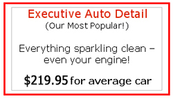 Executive Auto Detailing - $199 for the Average Car